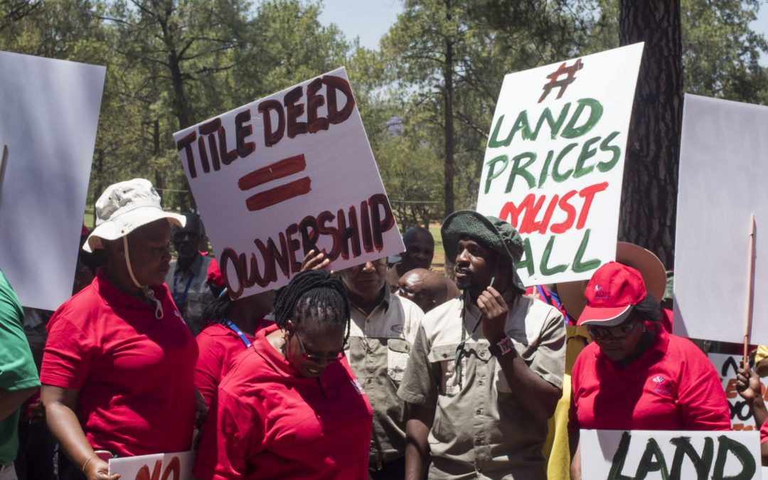 Expropriation to make more land available for black farmers